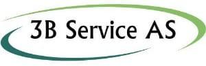 3B Service