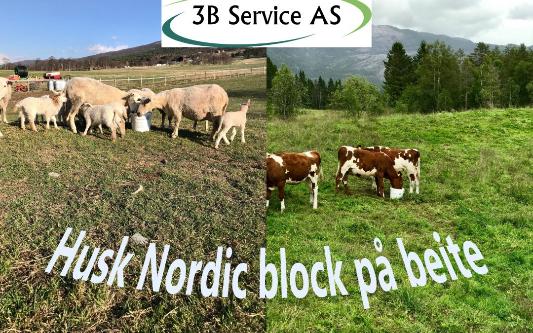 Nordic block