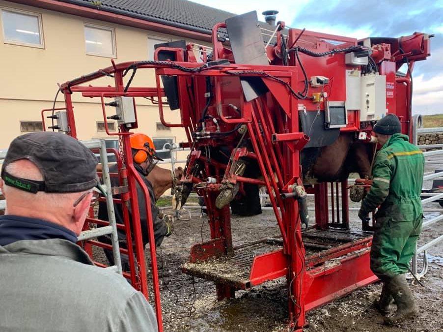 Interessant og lærerikt klauvhelse foredrag med gårdsveterinær Roger blowey den 3.desember?
