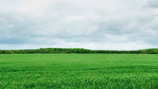 Vil du forbedre miljøet i fjøset og nærmiljøet på gården?