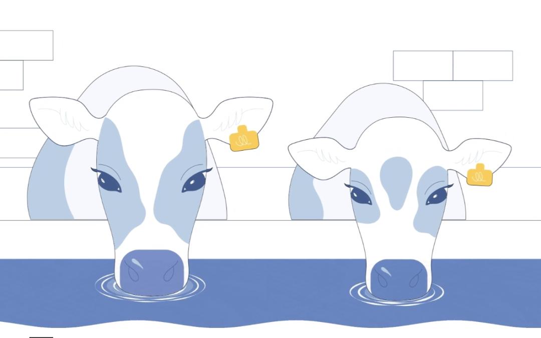 Anolytech sikrer bakteriefritt vann