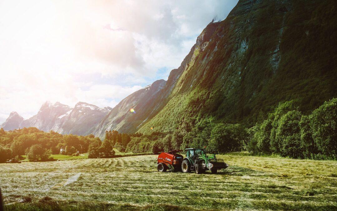 Viktigheten av det norske bondeopprøret